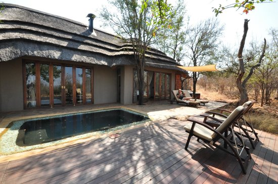 Madikwe Hills Private Game Lodge : Private patio and pool