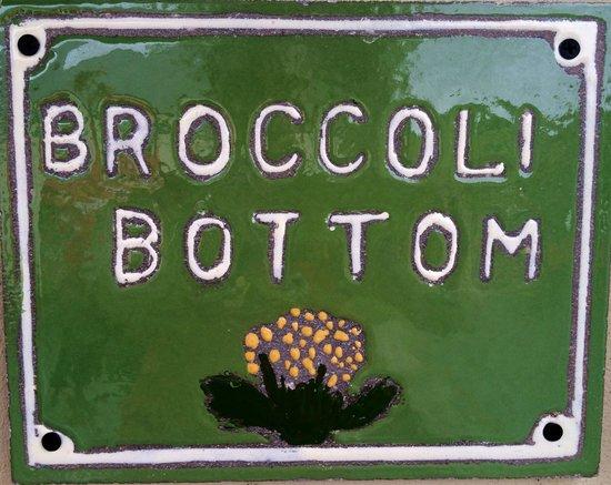 Broccoli Bottom: The Main House