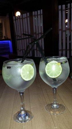 Evenia Zoraida Park: Gin Tonic