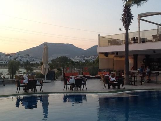 Tropicana Beach Hotel: pool area.