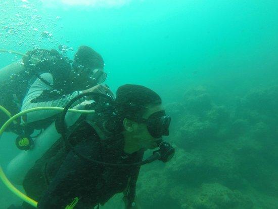 Andaman Bubbles: Deep blue