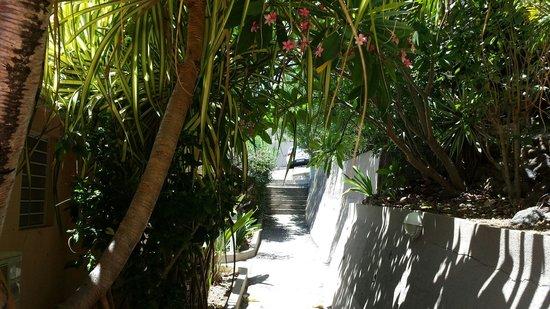 Les Balcons d'Oyster POnd : Petite allée  pour descendre à la piscine
