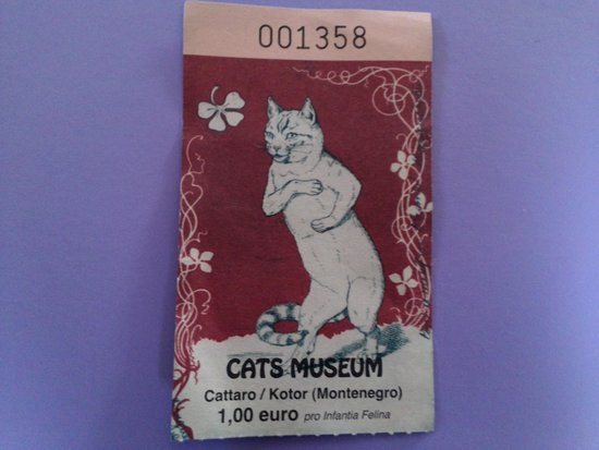 Cats Museum