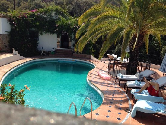 Jardines De La Reina Boutique Bed & Breakfast : Pool