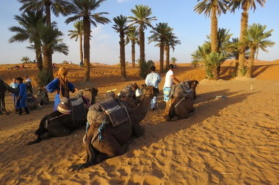 Morocco Excursions: Leaving the base hotel for the desert just before sunset.