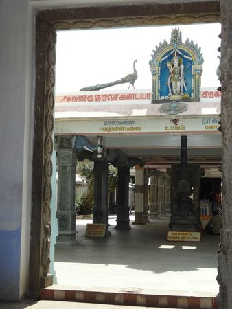Kurinji Andavar Temple: Entrance