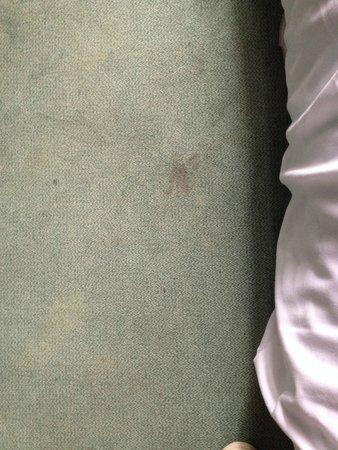 Hotel Le Richelieu : Tâches noire au sol, première vu dés notre entrée dans la chambre