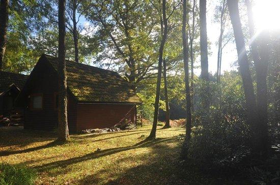 Burnbank Lodges: Zijkant van ons huisje