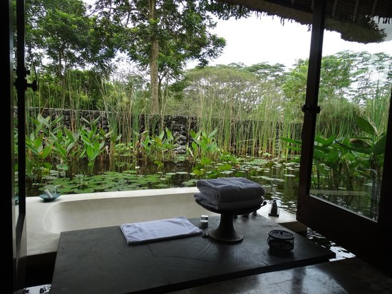 Alila Ubud: pool villa bath