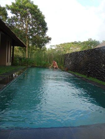Alila Ubud : pool villa pool
