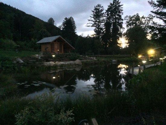 Logis La Residence : Un chello de nuit avec leur petit étang, ces derniers sont sur le côté du parc et son donc très