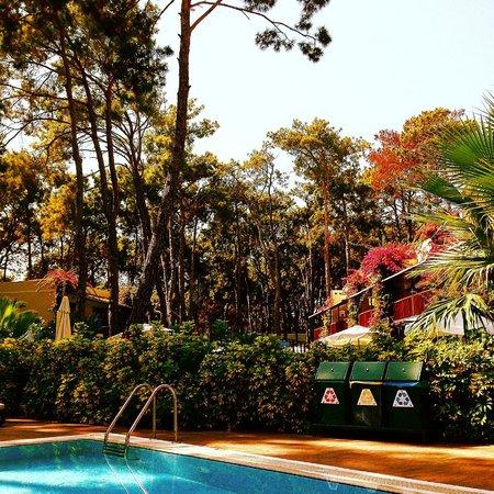Turquoise Resort Hotel & Spa: Göl evleri