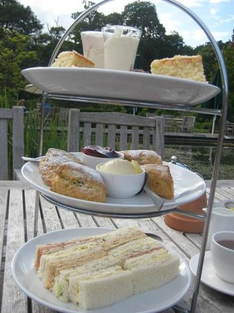Rhinefield House Hotel: Delicious afternoon tea
