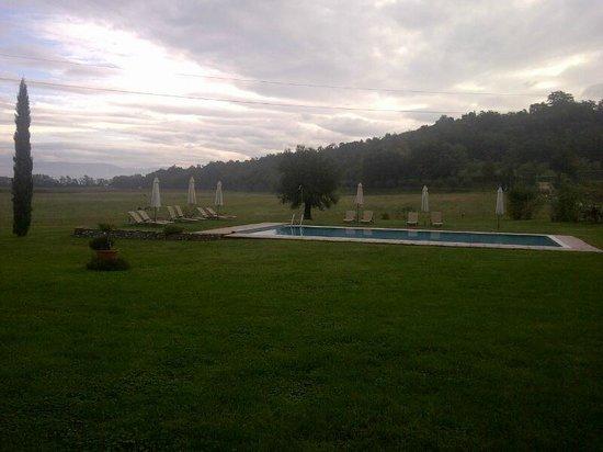 Agriturismo Sambuco: La piscina immersa nel verde