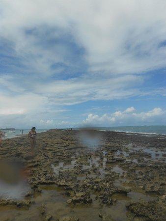 Carneiros Beach: Recifes Infinitos