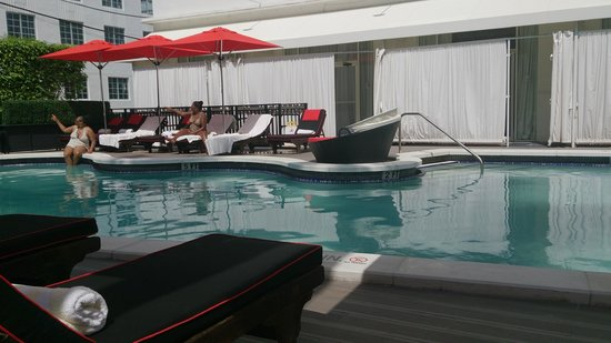 Red South Beach Hotel: Pool from the hedge side