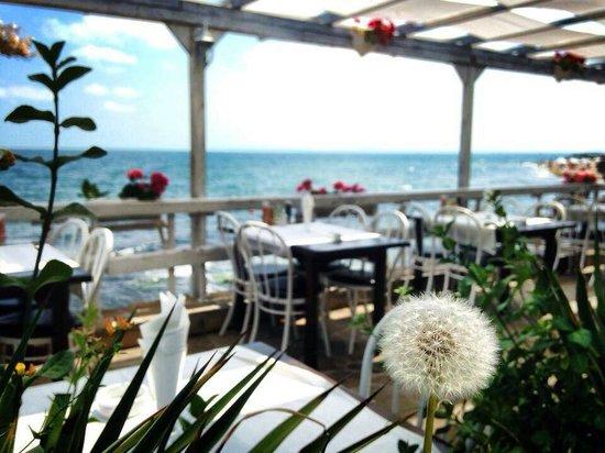 """The Old Nessebar Restaurant: Restaurant """"the old nessebar"""""""