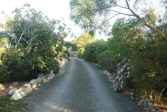 Baudin Beach, أستراليا: Stradina di accesso