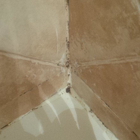 Golden Tulip Farah Marrakech: Muffe sulla vasca
