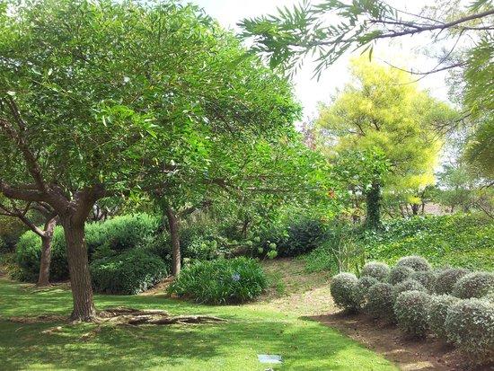 Novotel Barcelona Cornella: alberi