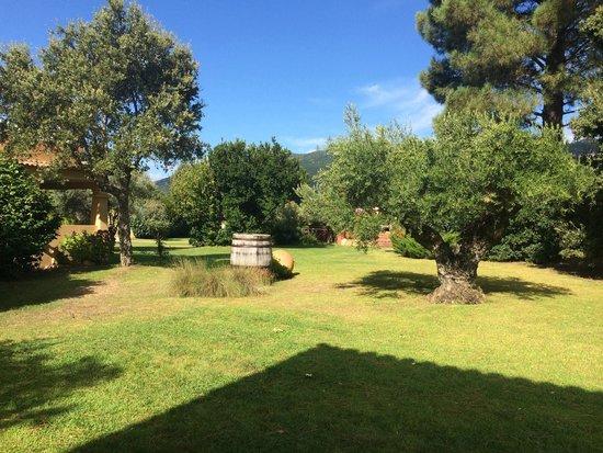 Hotel Residence du Pont de L'Oso : Giardino