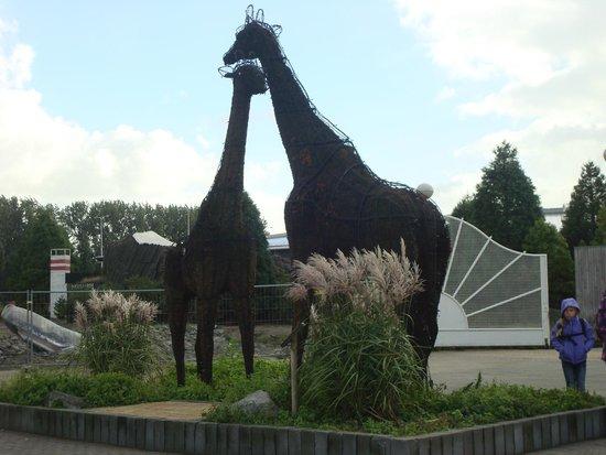 Rotterdam Zoo: При входе в зоопарк