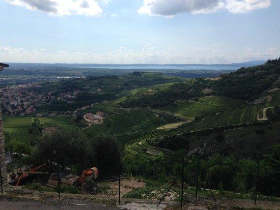 Pagus Wine Tours : Udkig til Gardersøen