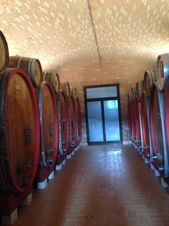 Pagus Wine Tours : Tønderne
