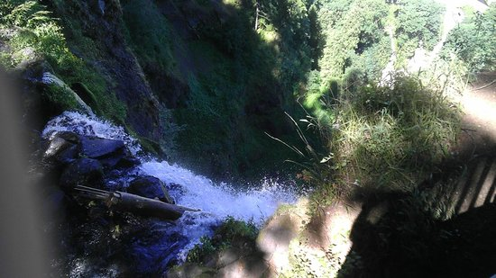 Multnomah Falls: Overlooking the precipice of the falls....long way down!