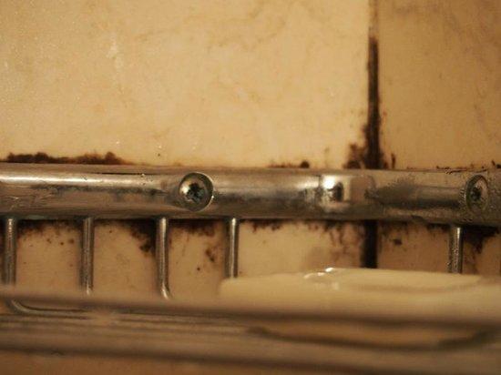 Hotel Adriatico: Bathroom pic 3