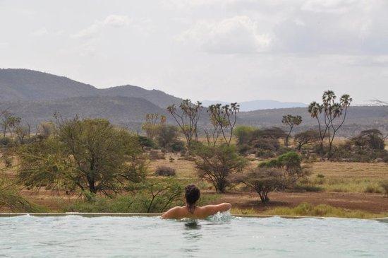 Buffalo Springs Game Reserve, Kenia: Zwembad met zicht over hele park