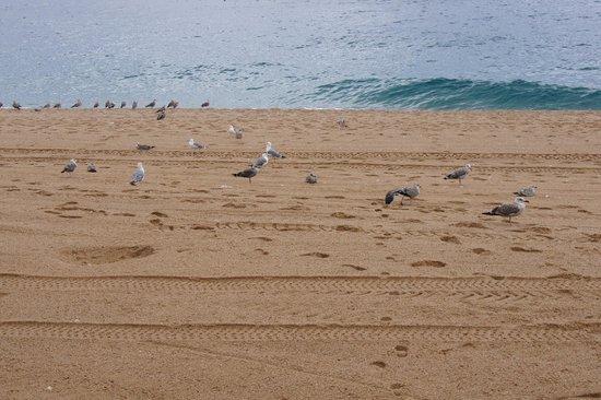 Lloret Beach : plaża po deszczu