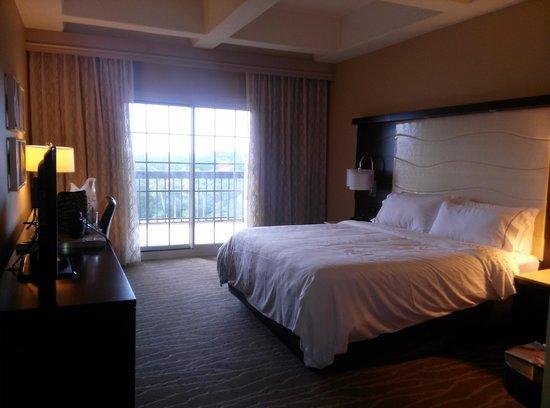Renaissance Orlando at SeaWorld: My room