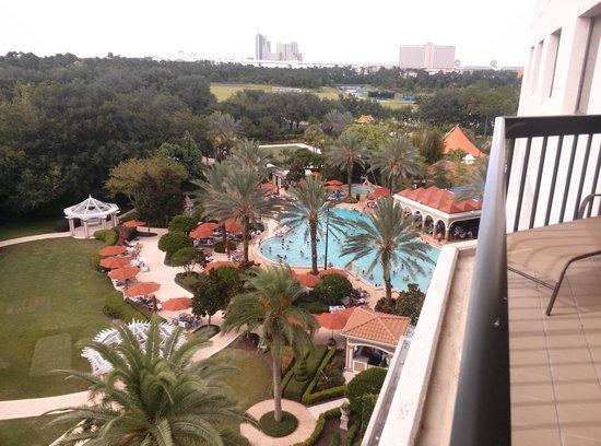 Renaissance Orlando at SeaWorld: View