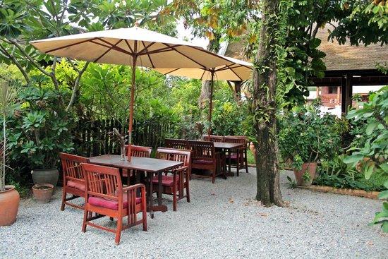 Villa Maydou : Garden