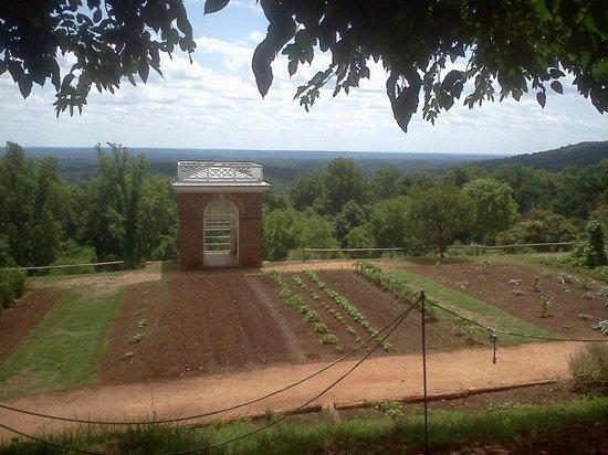 Thomas Jeffersons Monticello: view of gardens