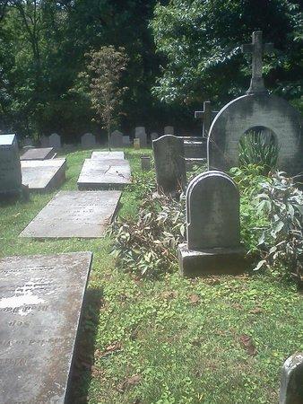 Thomas Jeffersons Monticello: Graves