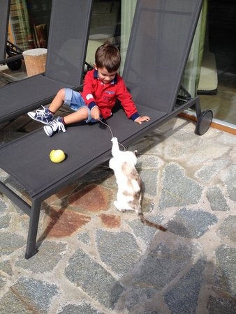 Agritur Il Tempo delle Mele: Relax in giardino con i gatti di Daniel