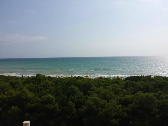 Pool on the beach - Picture of Hotel Doge, Alba Adriatica