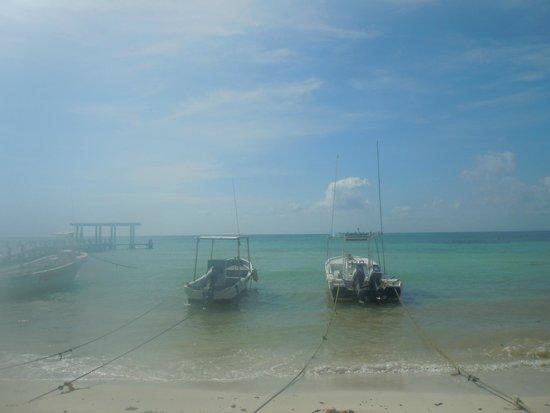El Taj Oceanfront & Beachside Condos Hotel: view from Indigo Beach Restaurant at breakfast time