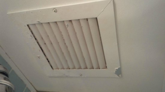 Resorts Casino Hotel: toilet fan never cleaned, making loud noise....