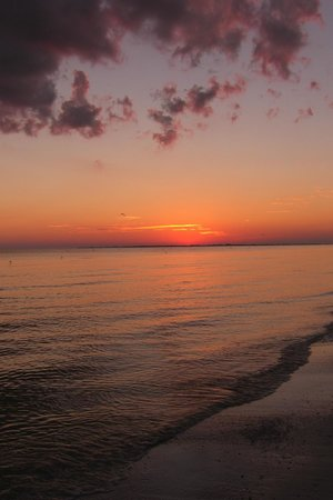 DiamondHead Beach Resort & Spa: Fort Myers Beach