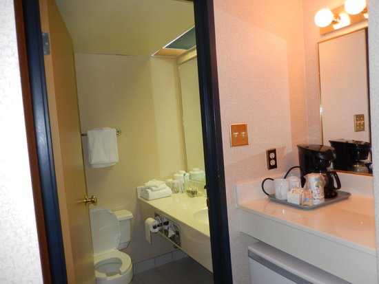 Holiday Inn Winnipeg - Airport West: Bathroom / tea,coffee facilities & fridge