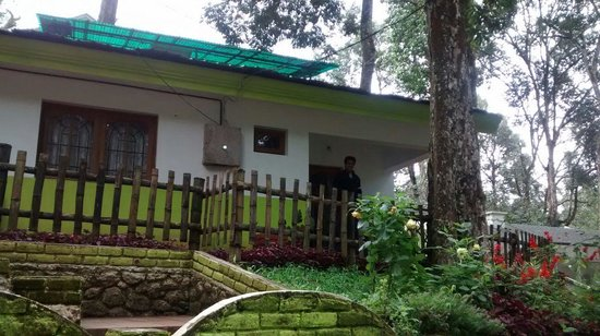Woodpecker Resort: munnar