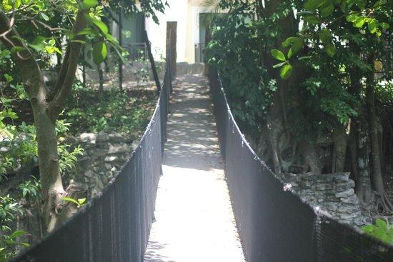 Sandos Caracol Eco Resort : Hotel & grounds