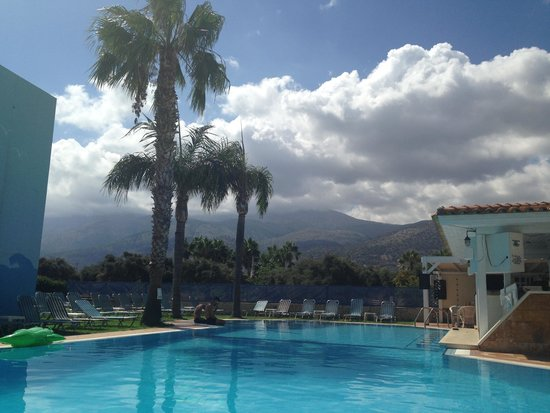 Vergina Studios & Apartments : Pool Area