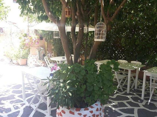 Hotel Attiki: giardino