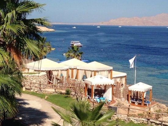 Island View Resort : Way to beach