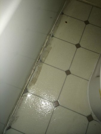 Travelodge Fairfield/Napa Valley: Linoleum Separating, Cigarette Burn  Stains And Mold In Bathroom