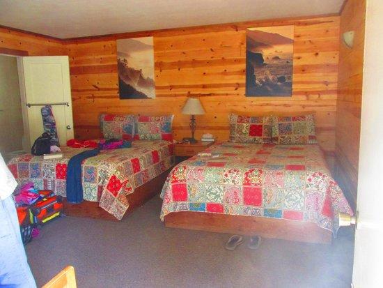Big Sur River Inn: Comfy Cabin